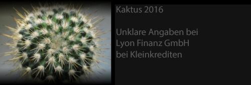 kaktus_2016